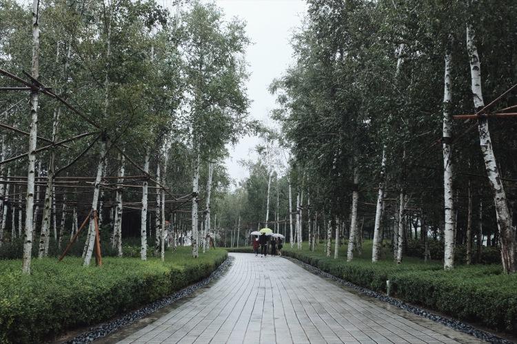 museum san-Flower Garden