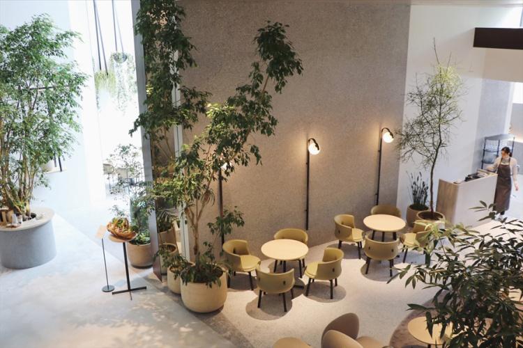 kashiyama_daikanyama_cafe