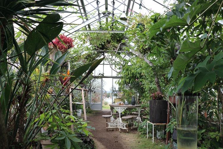 瀨戶內海_犬島生活的植物園一景